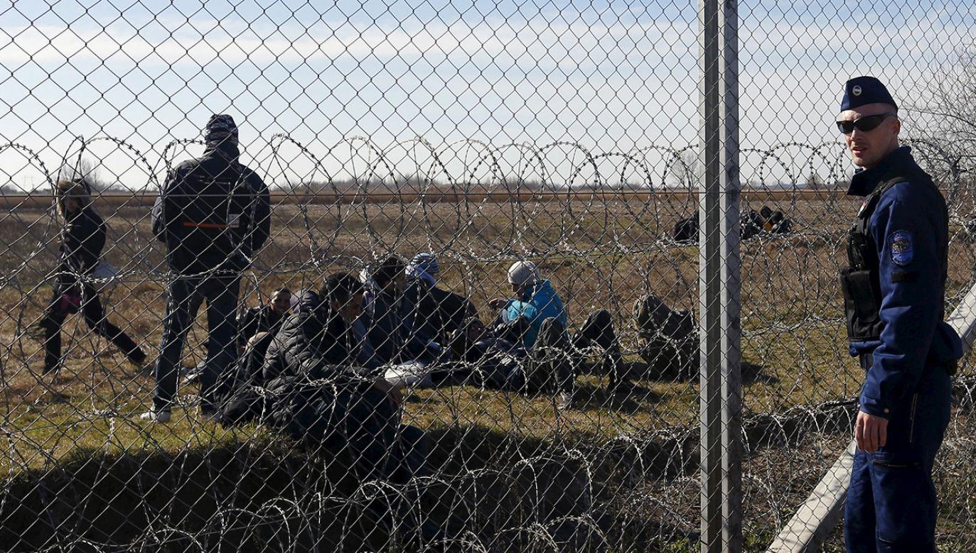 Imigranci przy granicy węgiersko-serbskiej (fot. REUTERS/Laszlo Balogh)
