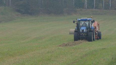 Ceny skupu większości podstawowych produktów rolnych były wyższe niż przed rokiem