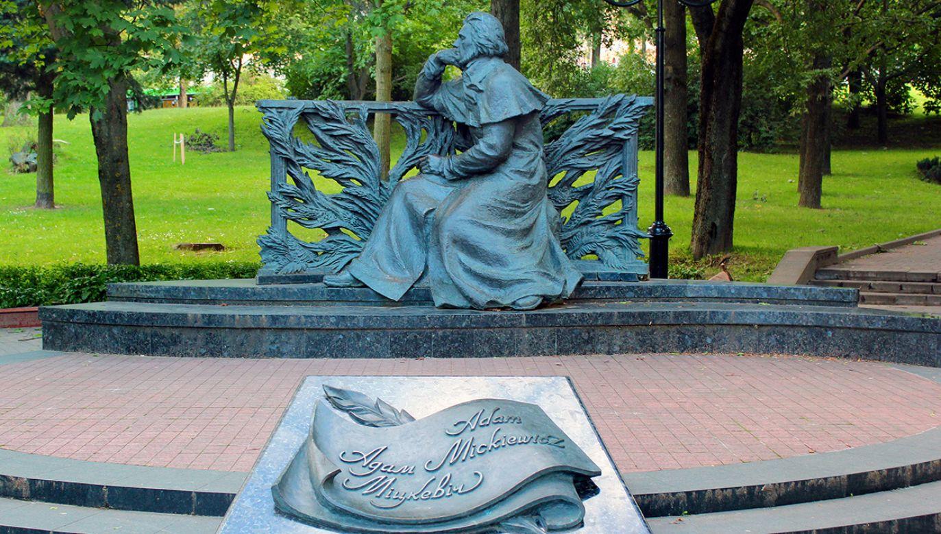 Pomnik został oczyszczony z farby (fot. Shutterstock/Andrii Zhezhera)