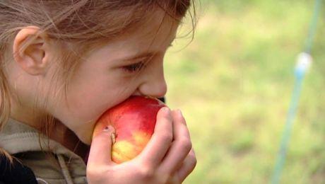 Jedząc owoce i pijąc mleko zajdą daleko.