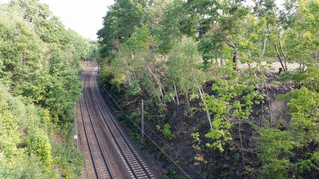 Prace poszukiwawcze były prowadzone w granicach miasta Wałbrzych (fot. wikipedia.org)