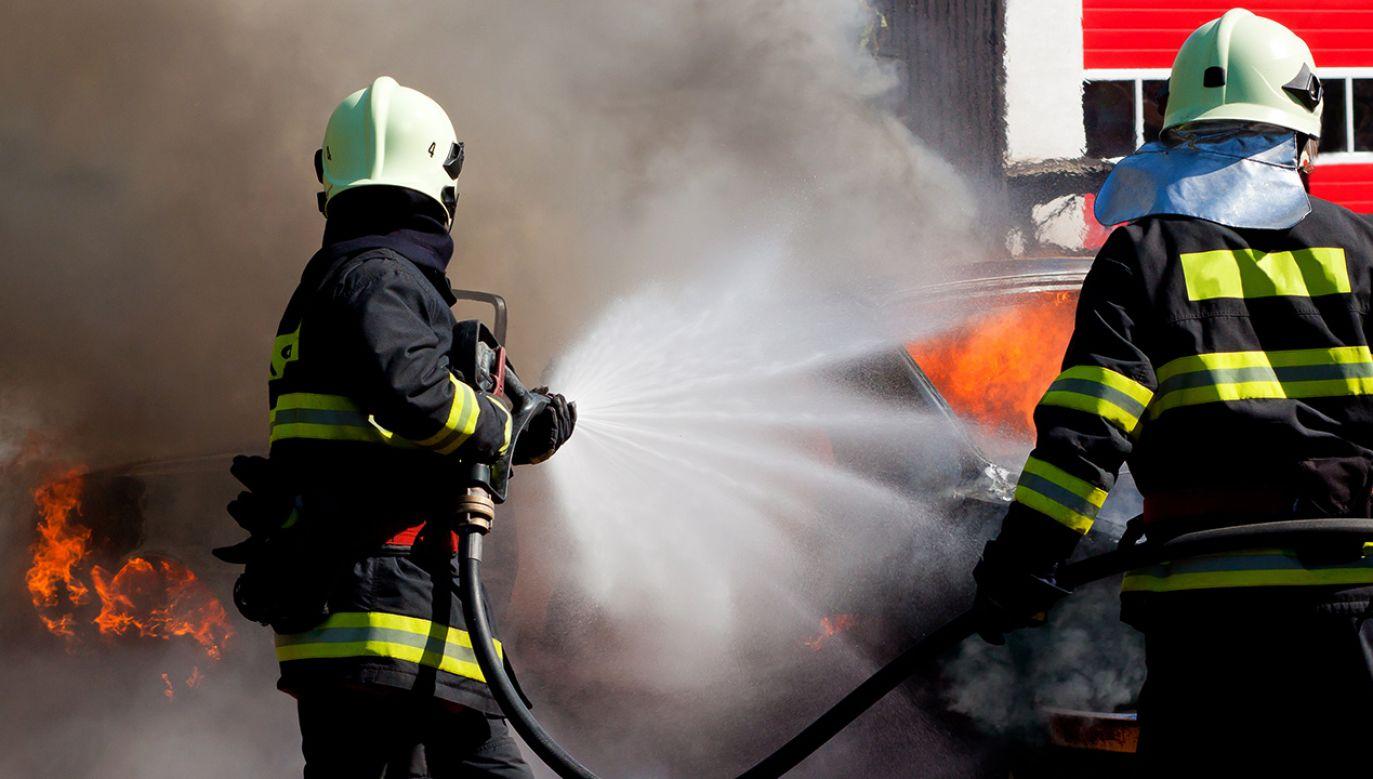 W pożarze nikt nie został poszkodowany (fot. Shutterstock/Martin Kucera)
