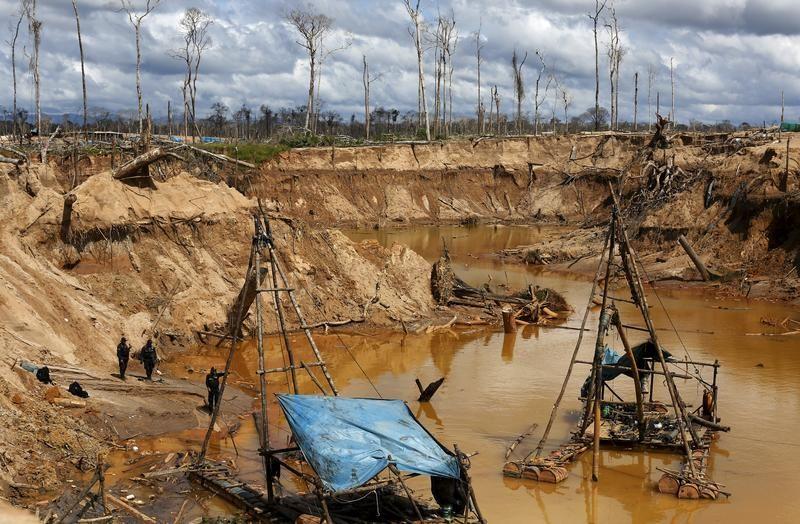 Nielegalna kopalnia złota (fot. REUTERS/Janine Costa)