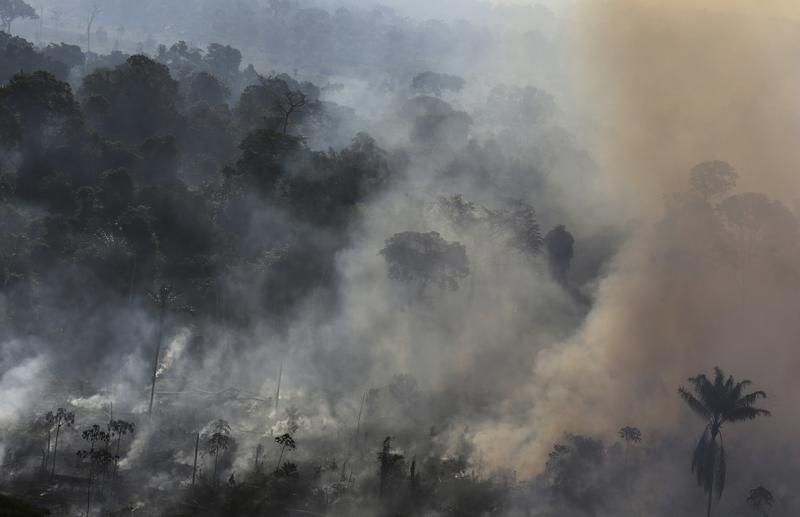 Wypalanie puszczy pod grunty rolne (fot. REUTERS/Nacho Doce)