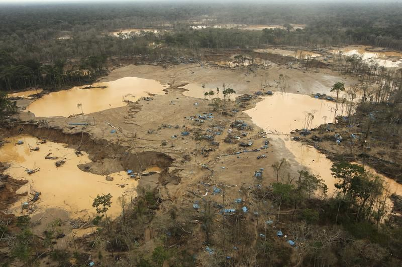 Obszar wylesiony na rzecz nielegalnego wydobycia złota w strefie znanej jako Mega 13 (fot. REUTERS/Nacho Doce)