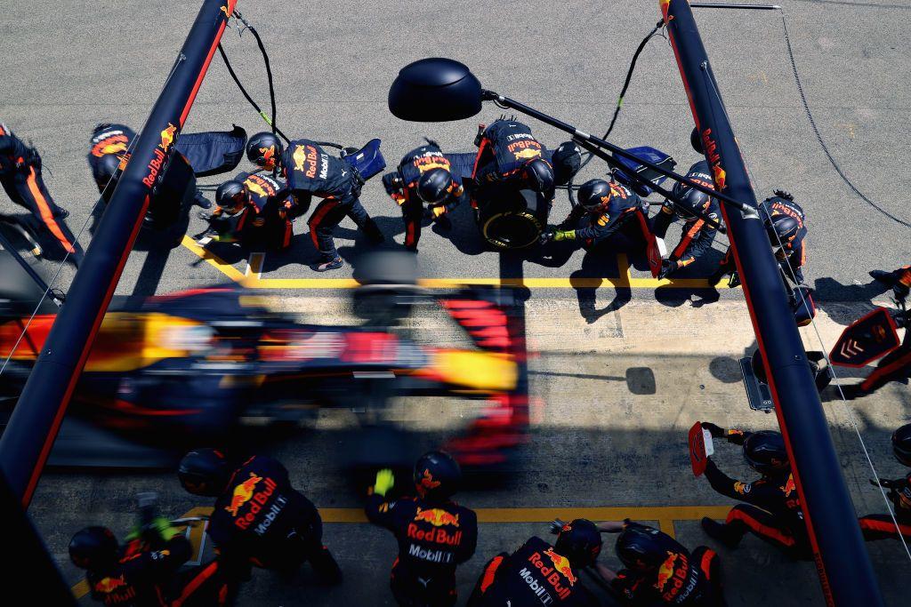 Australijczyk Daniel Ricciardo z ekipy Red Bull'a (fot. Will Taylor-Medhurst/Getty Images)