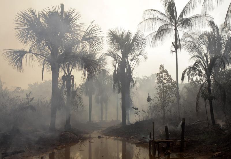 Pożar w pobliżu Mandaquiri (fot. REUTERS/Paulo Whitaker)