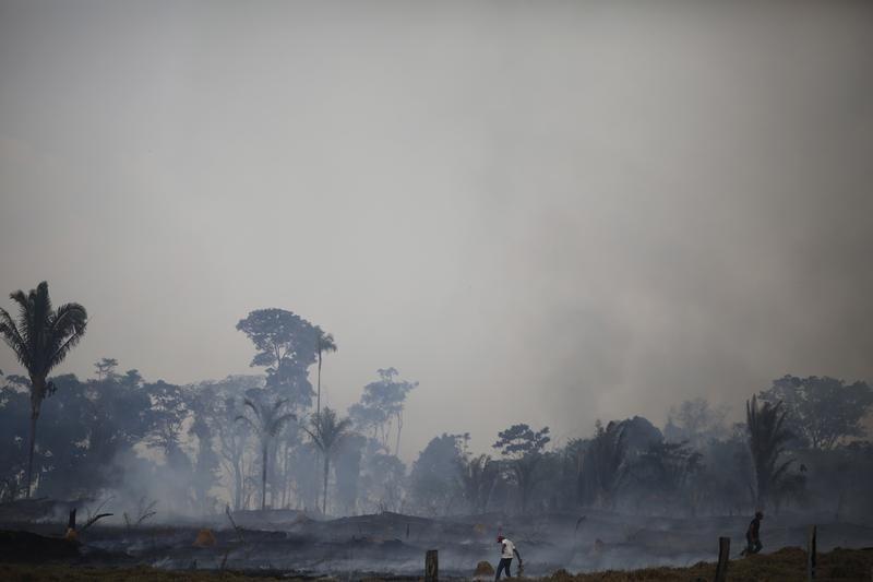 Ogień w gospodarstwie w Rio Pardo (fot. REUTERS/Nacho Doce)