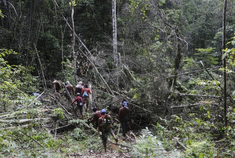 Indianie Ka'apor patrolujący dżunglę, aby zapobiec wycince (fot. REUTERS/Lunae Parracho)