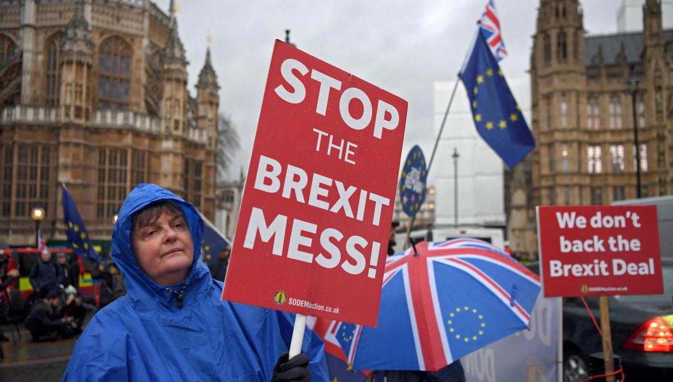 Brytyjczycy protestujący w sprawie Brexitu (fot. PAP/EPA/NEIL HALL)