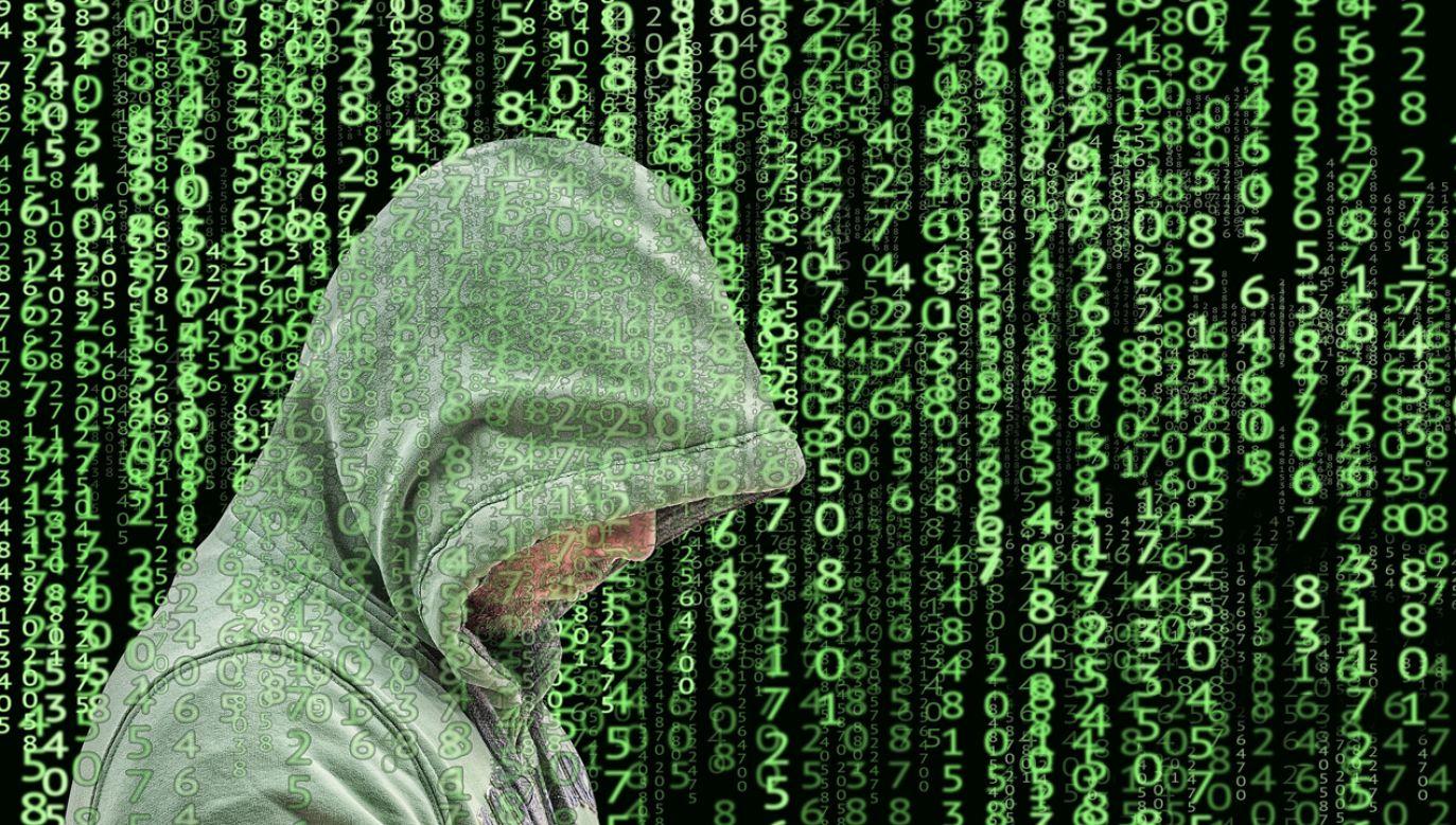 Wiele osób uważa, że Niemcy nie są przygotowane na wypadek cyberwojny (fot. Pixabay/tumisu)