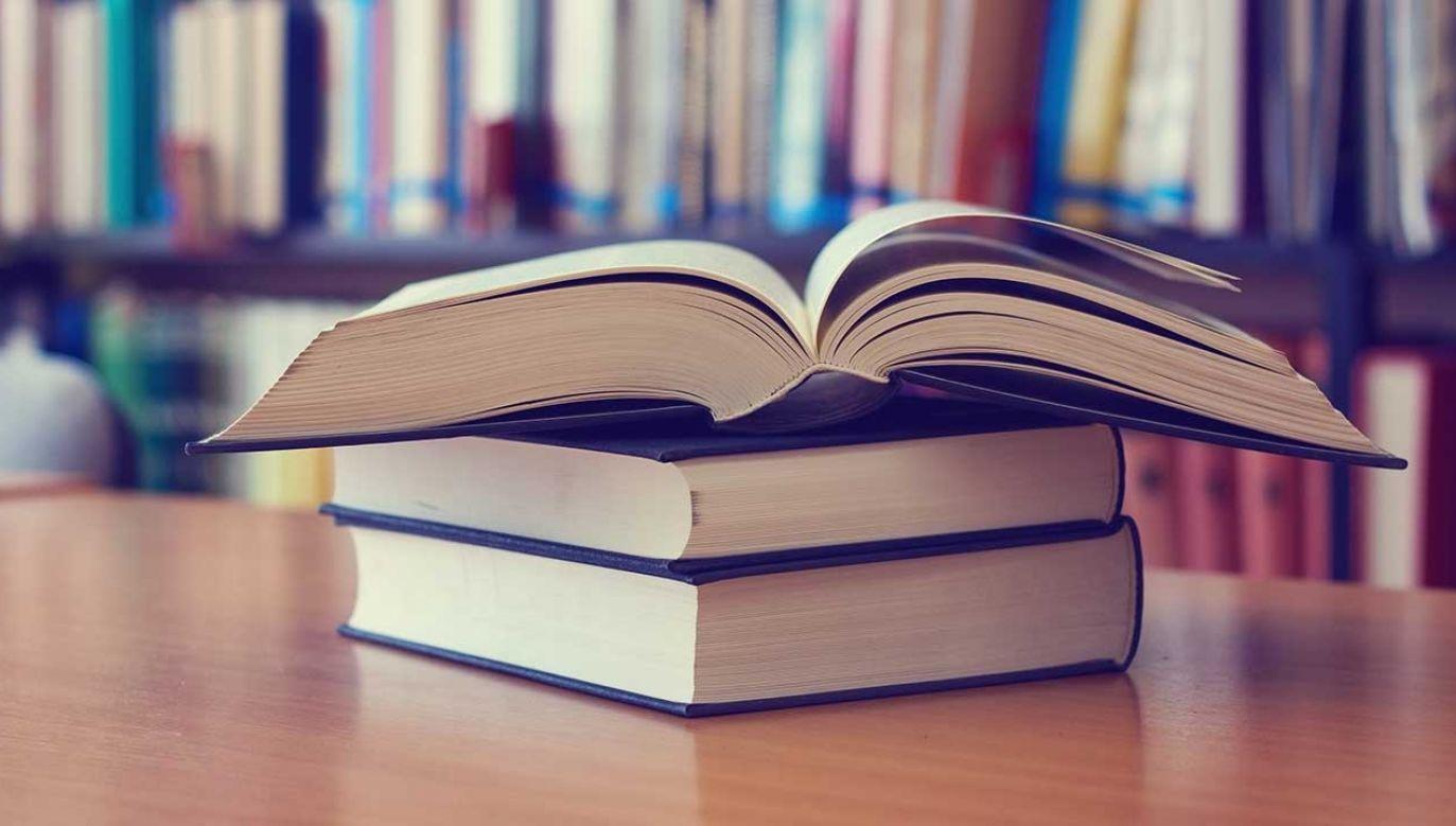 Według badań 28 proc. respondentów przyznało, że w ich domach nie ma żadnych książek (fot. Shutterstock/LeicherOliver)