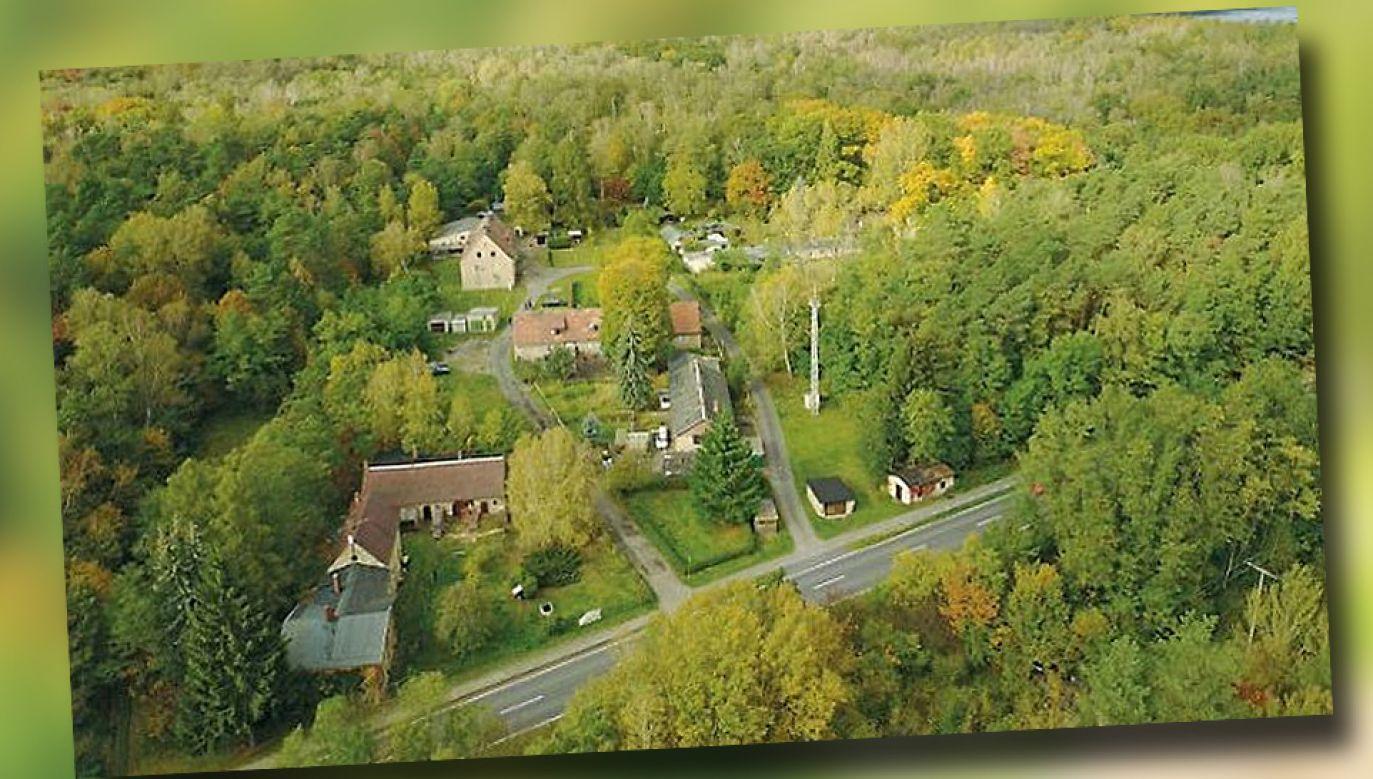 Wioska Alwine kosztowała 140 tys. euro (fot. TT)