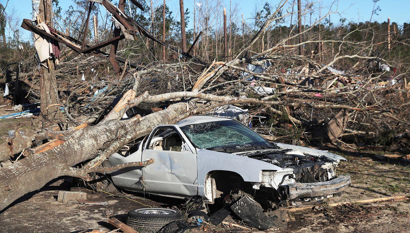 """Według przedstawiciela biura szeryfa hrabstwa Angelina drzewo dosłownie """"sprasowało samochód"""" (fot. REUTERS/Elijah Nouvelage)"""