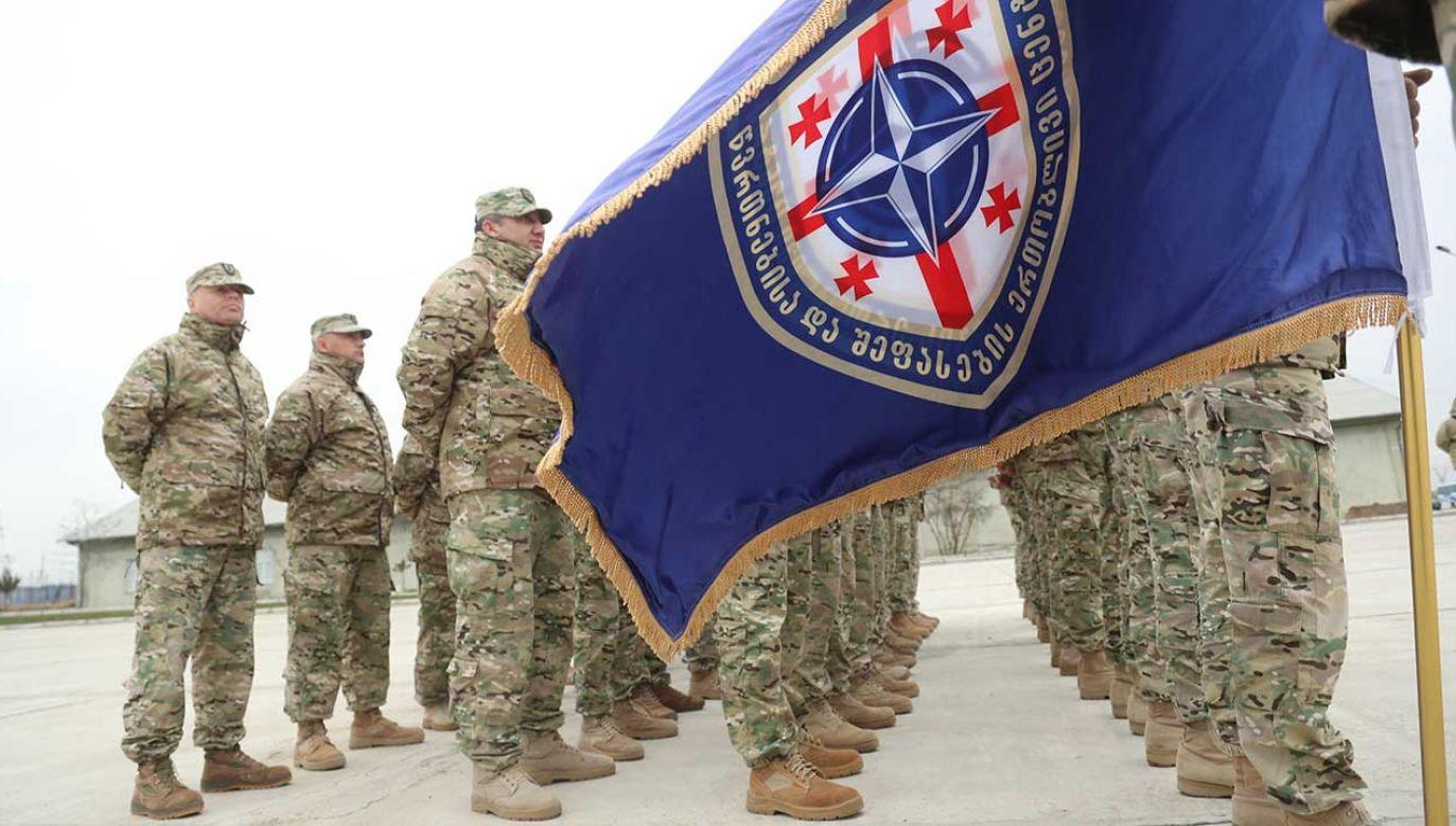 29 sojuszników wskazało, że Gruzja zostanie członkiem NATO (fot. PAP?Peter Tabichi)
