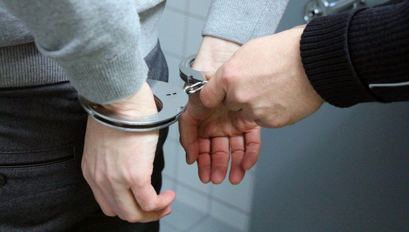 Przemytnicy 67 razy przerzucili migrantów w grupach po 10-30 osób (fot. pixabay/3839153)