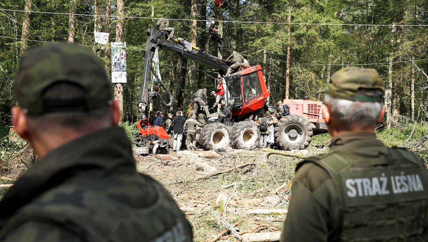 Zespół wypracuje plan ochrony Puszczy Białowieskiej (fot. REUTERS/Kacper Pempel)