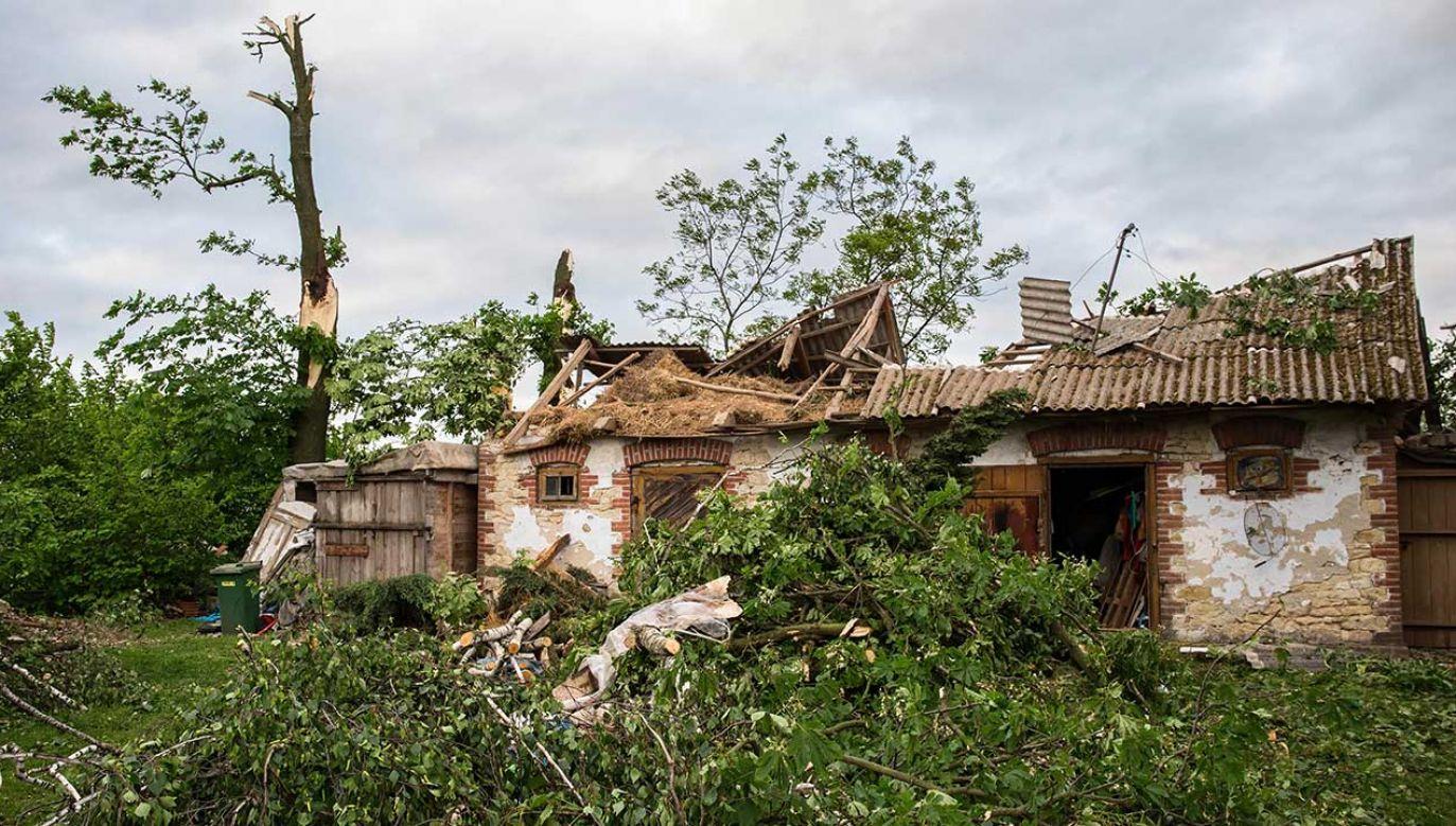 Zniszczenia spowodowane trąbą powietrzną, która przeszła przez gminę Wojciechów w woj. lubelskim (fot. PAP/Wojtek Jargiło)