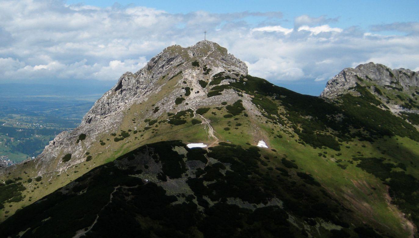 Botanicy z 11 krajów wspięli się na 302 górskie szczyty w Europie, aby sprawdzić, jakie gatunki roślin tam występują (fot. flickr.com/ Börkur Sigurbjörnsson)