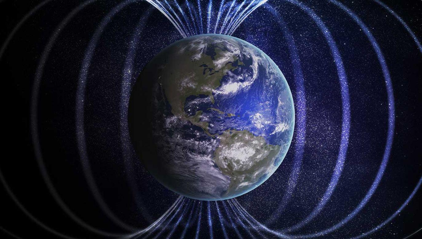 Podczas eksperymentów specjaliści ustalili, że pod wpływem zmian kierunku linii ziemskiego pola magnetycznego dochodzi u badanych do zmniejszenia amplitudy fal alfa w mózgu (fot. Shutterstock/vchal)