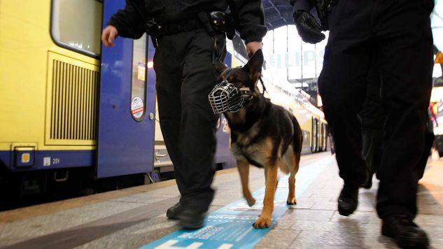 Napastnika poszukuje policja z psami tropiącymi (fot.  REUTERS/Christian Charisius)