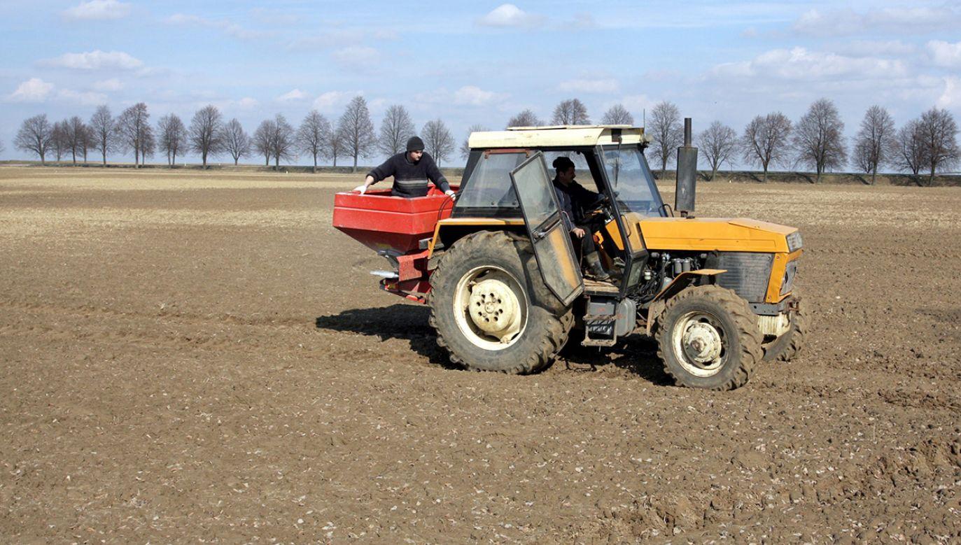 Rolnicy roziewający nawozy sztuczne (fot. arch. PAP/Piotr Polak)