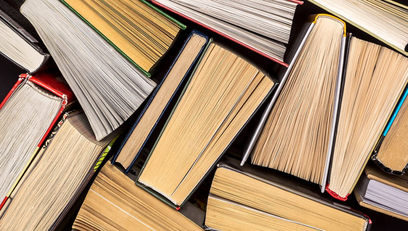 Książki można teraz wypożyczyć w każdej chwili (fot. Shutterstock/sasha2109)