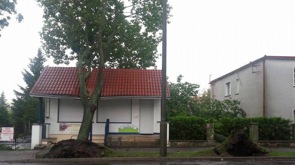 Uszkodzony dach sklepu przy ul. Konopnickiej na bydgoskim Szwederowie (fot. Filip Koźlik)