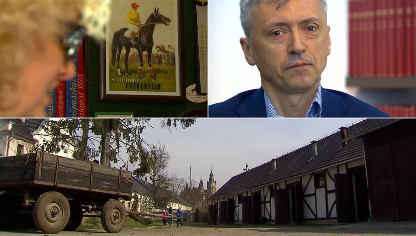 Stadnina w Mosznej mogła paść ofiarą oszustów (fot. TVP1)