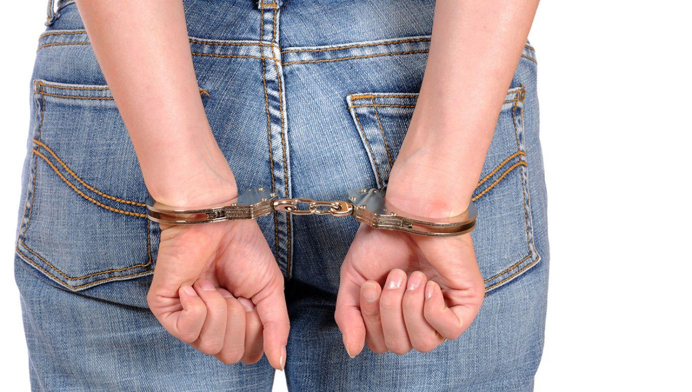 Trojgu podejrzanym grozi do 15 lat więzienia (fot. Shutterstock/PeJo)