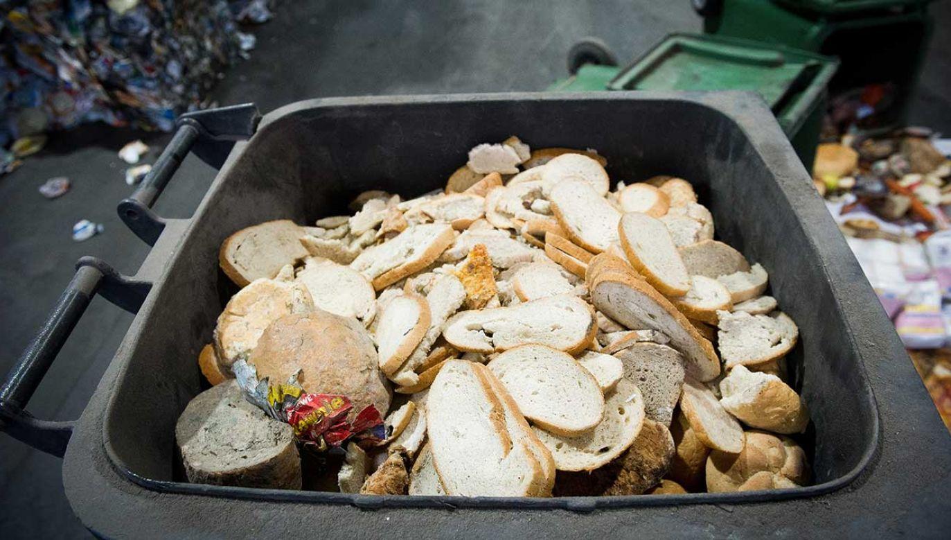 42 proc. respondentów przyznaje, że zdarza się im wyrzucać żywność (fot. arch. PAP/Grzegorz Michałowski)