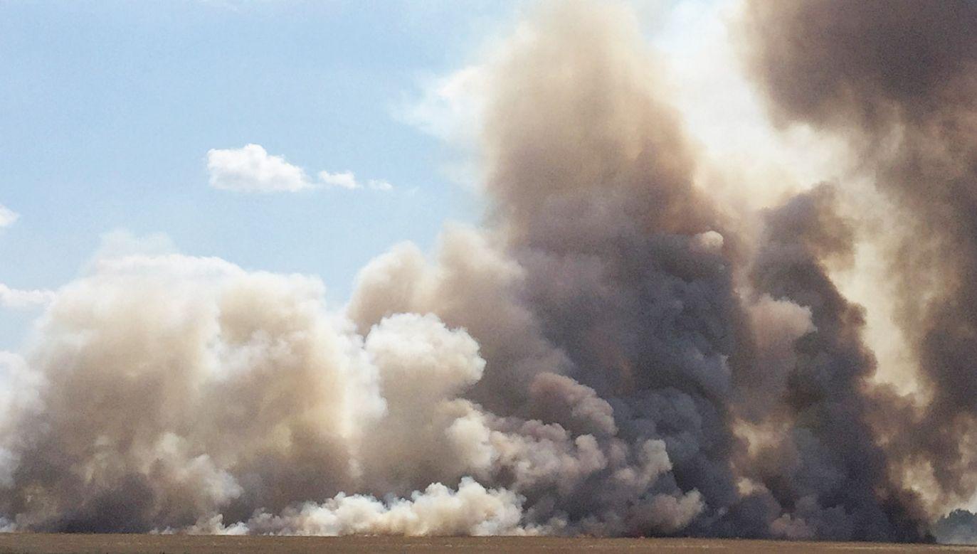 Policja ustala przyczyny pożaru (zdjęcie ilustracyjne - fot. PAP/Aleksander Koźmiński)