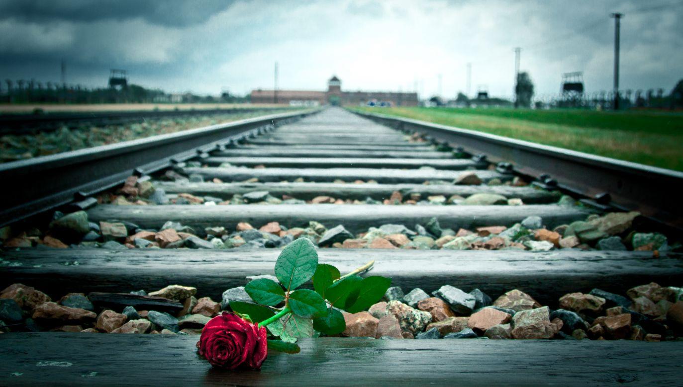 """ZDF robił wszystko, by nie przeprosić za nazwanie Auschwitz """"polskim obozem"""" (fot. flickr.com/Oscar Moya)"""
