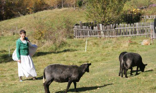 Nie mamy tutaj przemysłu, więc żyjemy z turystyki i wyróżniamy się tymi czarnymi owcami na tle innych góralskich regionów. Kojarzone negatywnie pojęcie my lansujemy jako pozytywne – mówi Monika Florek. Fot. Marcelina Kubiak