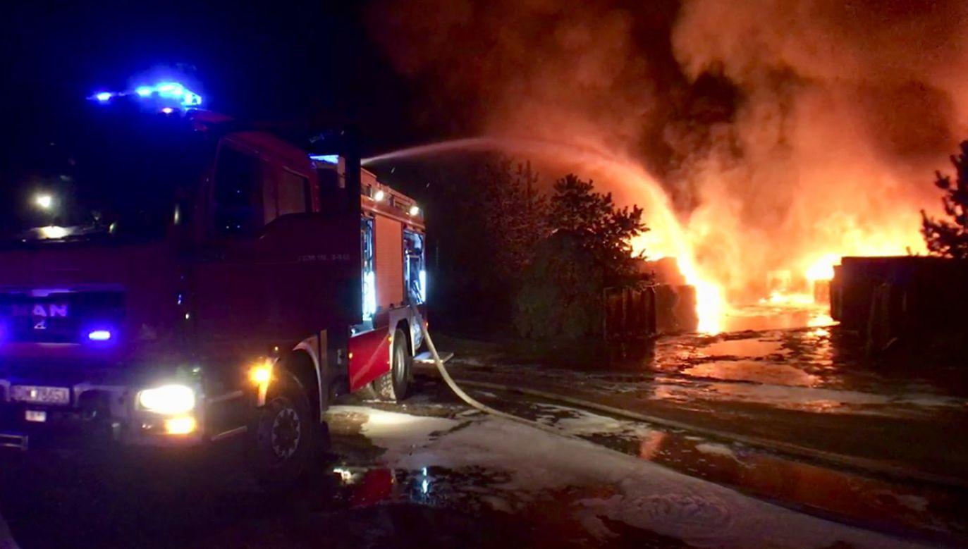 Z ogniem walczy 35 zastępów straży pożarnej (fot. Łukasz Owsiany/Redakcja Internetowa TVP3 Wrocław)