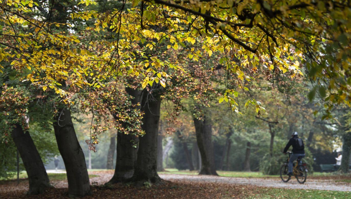Pogoda w weekend będzie już jesienna (fot. PAP/EPA/LUKAS BARTH-TUTTAS)
