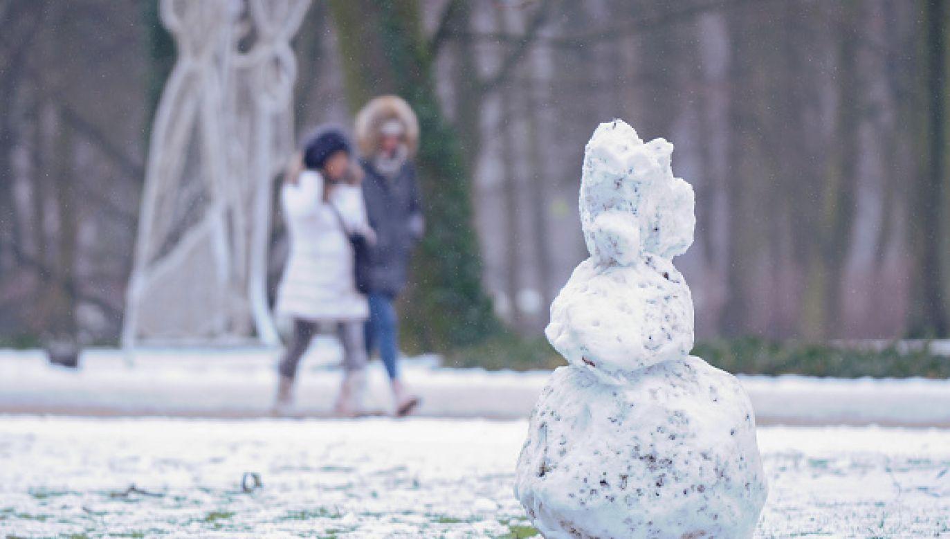 W kilku województwach może obficie posypać śniegiem (fot. Jaap Arriens/NurPhoto via Getty Images)