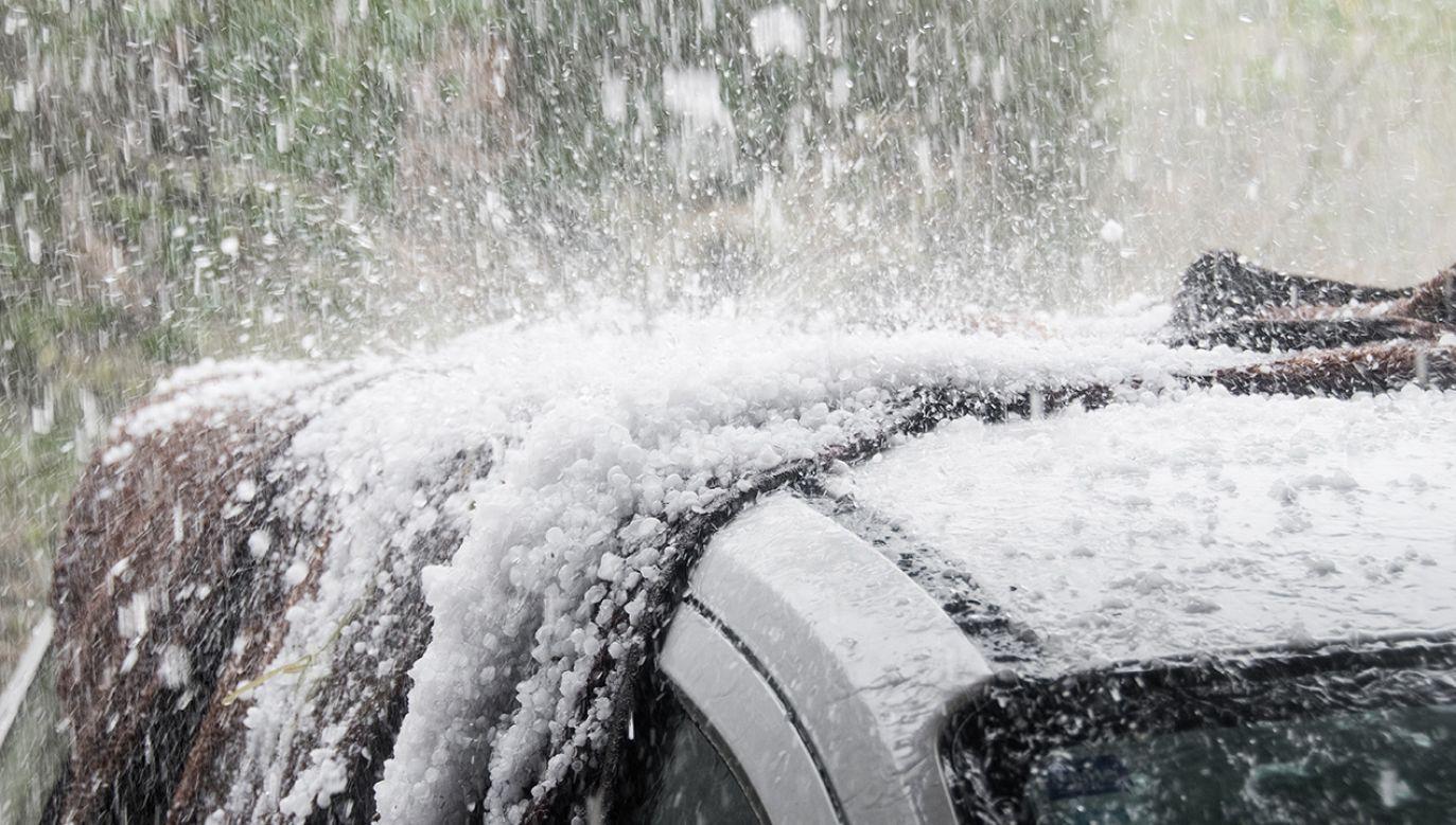 IMGW ostrzega przed burzami, obfitymi opadami i gradobiciem (fot. Shutterstock/Ben Romalis)