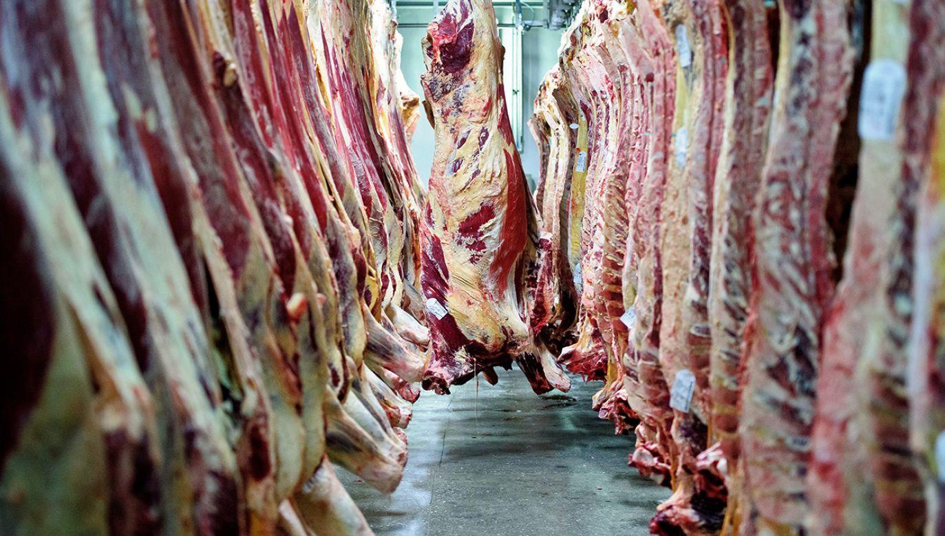 Czechy wprowadziły kontrole przed miesiącem w związku z wykryciem salmonelli w polskiej wołowinie (fot. arch.  PAP/Wojciech Pacewicz)