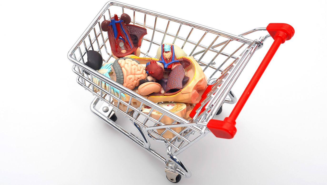 Urolog i anestezjolog pobierali nerki na handel (fot. Shutterstock/mekcar)