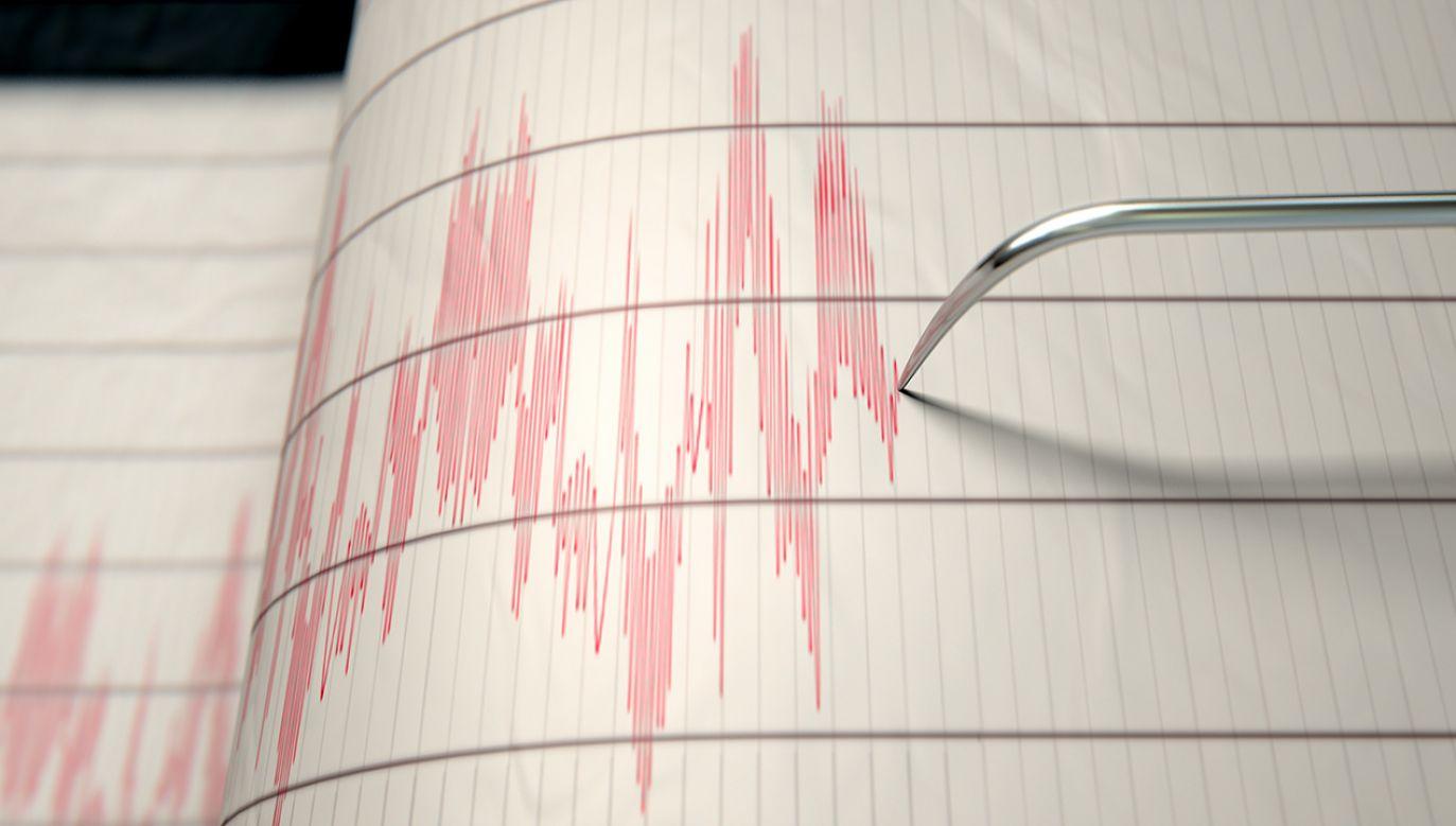 O trzęsieniu poinformowały amerykańskie służby sejsmologiczne (fot. Shutterstock Inked Pixels)