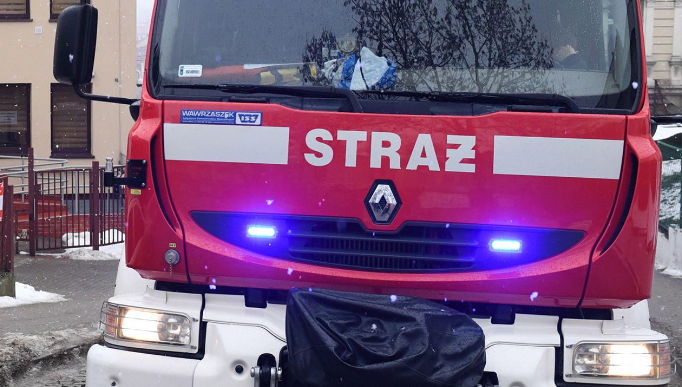 W akcji gaśniczej brało udział dziewięć strażackich zastępów (fot.  arch. PAP/Darek Delmanowicz)