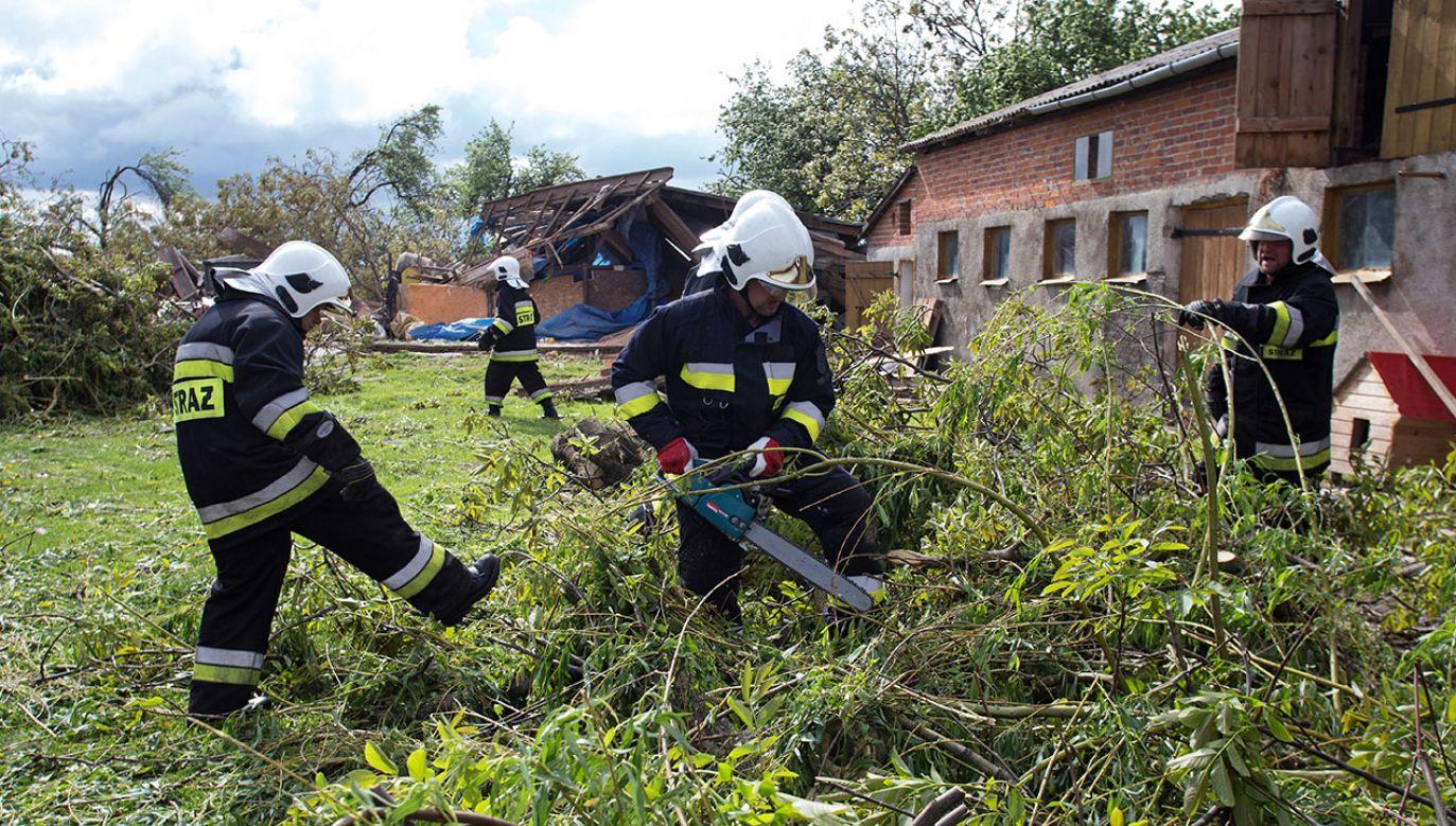 Strażacy naprawiający zniszczenia spowodowane trąbą powietrzną, która 21 bm. przeszła przez gminę Wojciechów w woj. lubelskim (fot. PAP/Wojtek Jargiło)