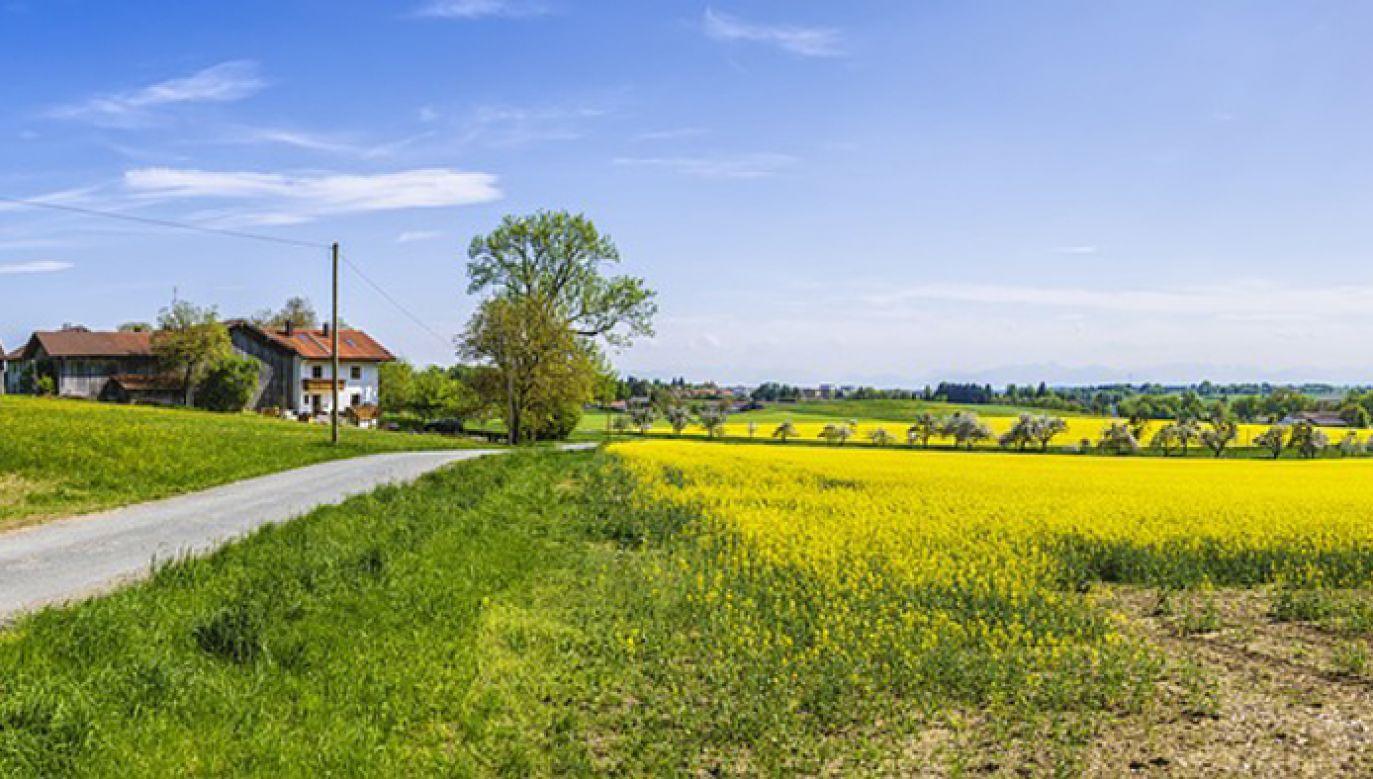 O dopłaty w Polsce wnioskuje co roku ponad 1,3 mln rolników (fot. Pixabay/FelixMittermeier)