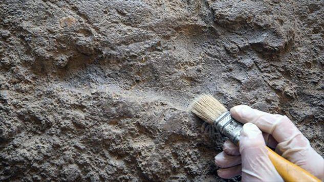 Stopy osoby, która zostawiła ślady miały 26-27 centymetrów, co odpowiada dzisiejszemu rozmiarowi obuwia 42-43 (fot. TT/Turkey_Pics)