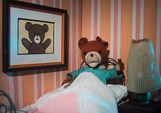 Teddy Drop-Ear
