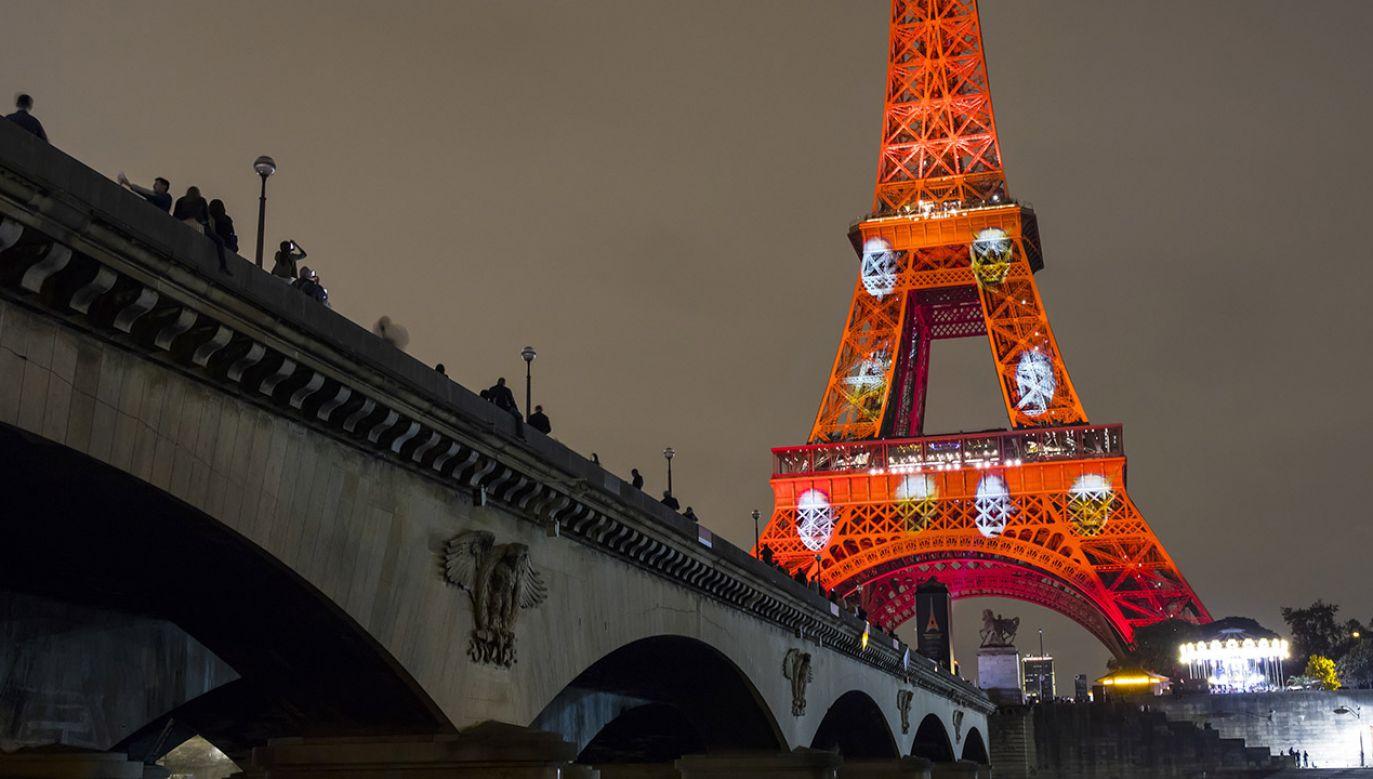 Wieża Eiffla (fot. PAP/EPA/IAN LANGSDON)