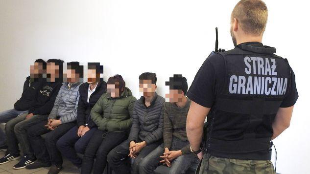 Żaden z cudzoziemców nie miał przy sobie dokumentów (fot. Nadodrzański Oddział Straży Granicznej)