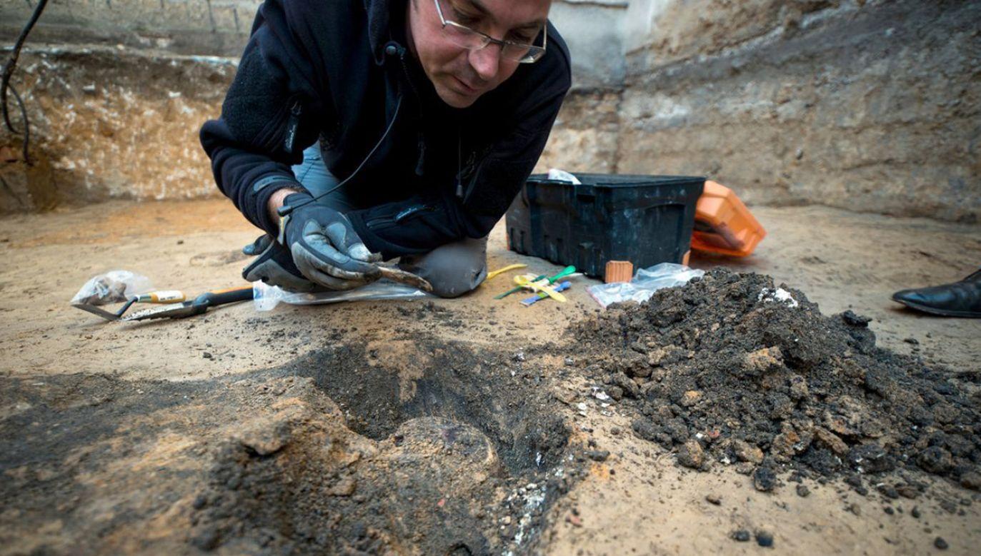 Dalsze badania pomogą określić, kto odpowiada za śmierć odnalezionych ofiar. Na terenie aresztu mogą znajdować się szczątki rtm. Pileckiego (fot. tt/@poszukiwaniaipn)