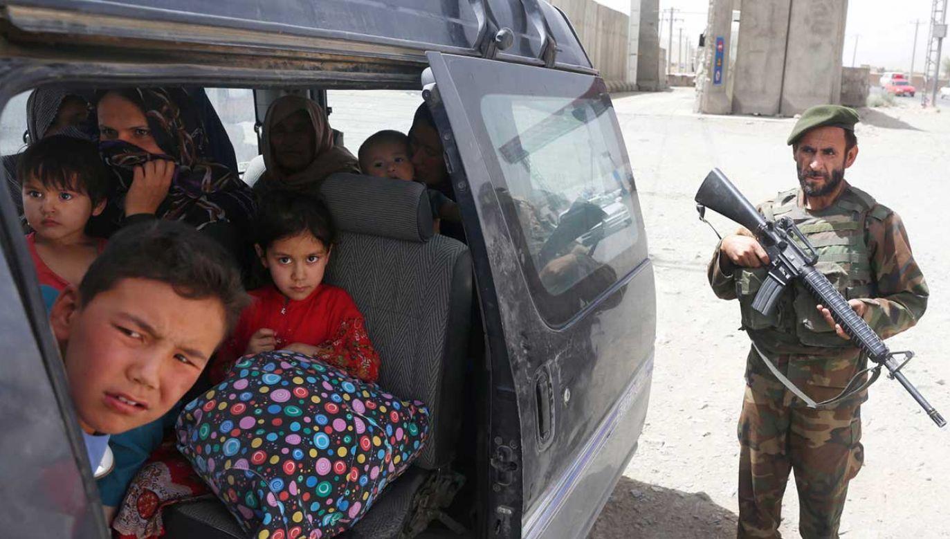 Afgański oficer ochrony podczas inspekcji samochodu z afgańską rodziną, która uciekła z prowincji Ghazni (fot. PAP/EPA/HEDAYATULLAH AMID)